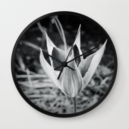Clematis bud B&W Wall Clock