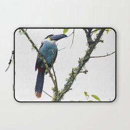 Tucan of the Andes Laptop Sleeve
