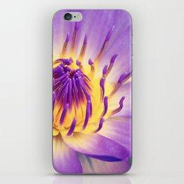 Ao Lani Heavenly Light iPhone Skin