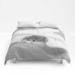 Orchids Comforters