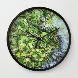 Euphorbia Wall Clock