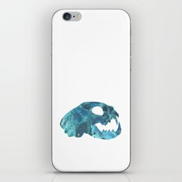 Cat Skull Art iPhone Skin