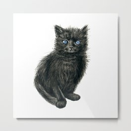 Black kitten Metal Print