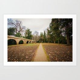 Sigue el camino Art Print
