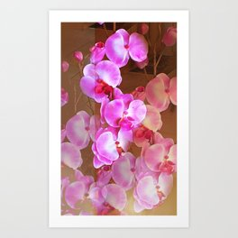 Pink Orchid Visual Delight Art Print