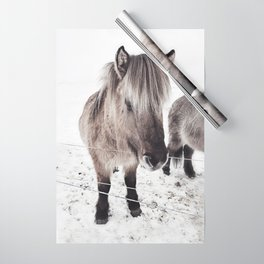 snowy Icelandic horse bw Wrapping Paper