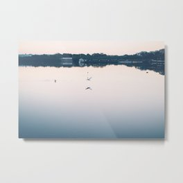 A Bird Fishing at Sunset Metal Print