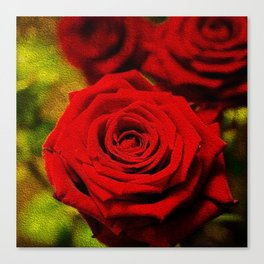 Rose oil painting Canvas Print