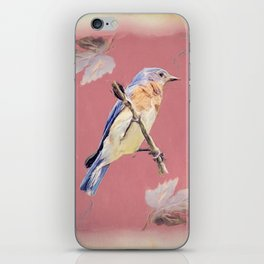 Bluebird Songbird Blue Bird Cottage Chic Country Art A356 iPhone Skin