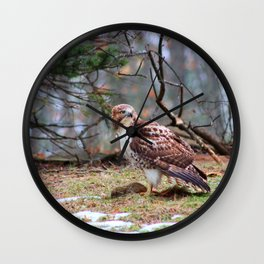 Killer Hawk Wall Clock