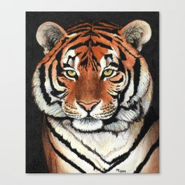 Tiger portrait drawing Canvas Print