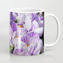 Purple and White Crocuses Coffee Mug