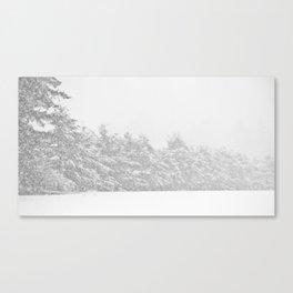 Snow Haze Canvas Print