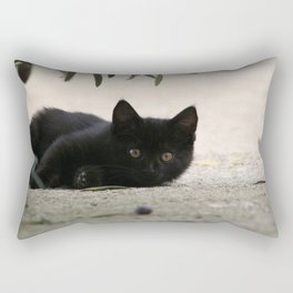 Black Kitten Playing with Olives Rectangular Pillow