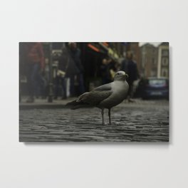 Not a flocking chance, Dublin Metal Print