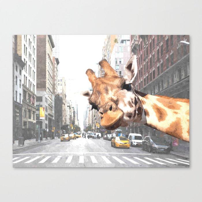 Selfie Giraffe in New York Leinwanddruck