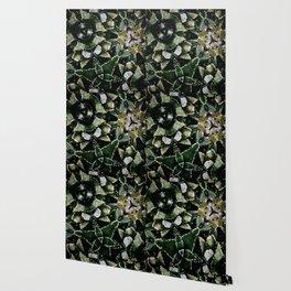 Succulents on Show No 1 Wallpaper