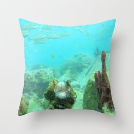Watercolor Seascape, St John 70, USVI Throw Pillow