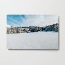 Utah VII - Snowstorm Metal Print