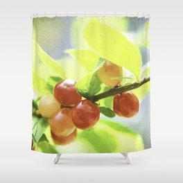nanking cherry Shower Curtain