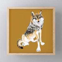 Mexican Wolf #1 Framed Mini Art Print