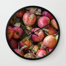 Pile of freshly picked organic farm apples with imperfections Wall Clock