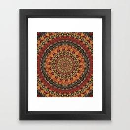 Mandala 563 Framed Art Print