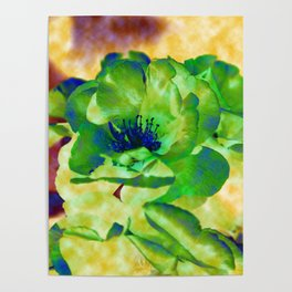 Yellow Rose Abstract Poster