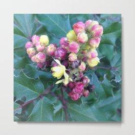 Holly flower heart Metal Print