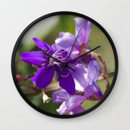 """Viola Vibrante"" by ICA PAVON Wall Clock"
