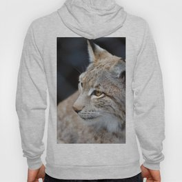Young lynx close-up portrait Hoody