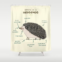Anatomy of a Hedgehog Shower Curtain