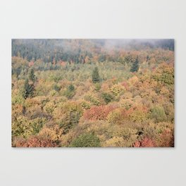 Foggy Autumn Morning Canvas Print