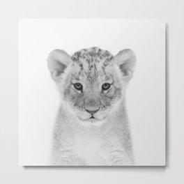 Baby Lion Metal Print
