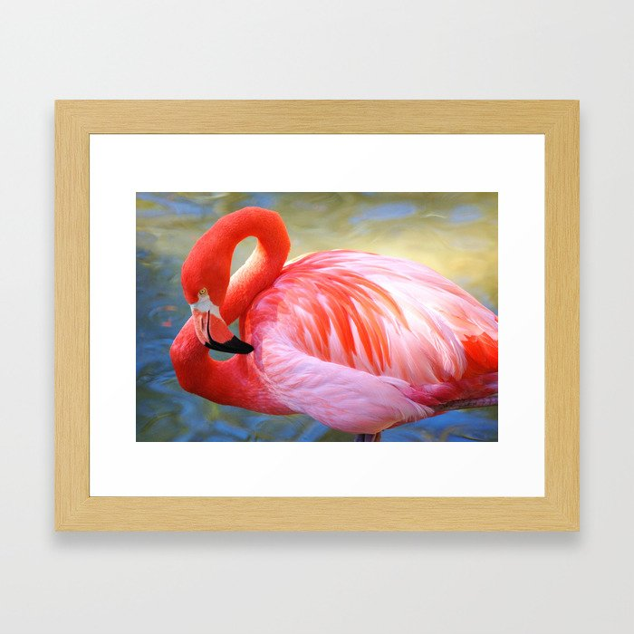 Caribbean Flamingo Framed Art Print