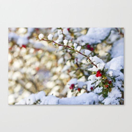 Sweet winter Canvas Print