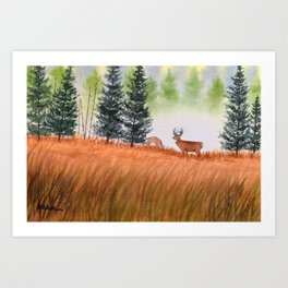 Deer On A Misty Morning Art Print