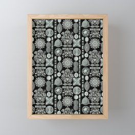 Ernst Haeckel - Scientific Illustration - Diatomea Framed Mini Art Print
