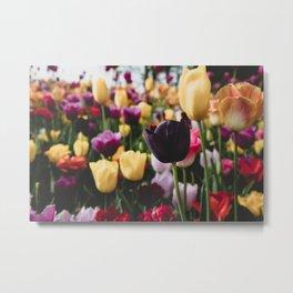 The Flourish Image 1.0 Metal Print