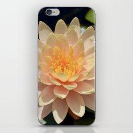 Pretty Peach Waterlily iPhone Skin