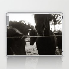 { pony pals } Laptop & iPad Skin
