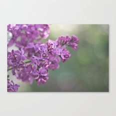 have a nice summer Canvas Print
