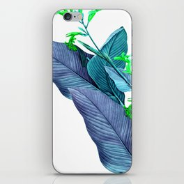 Leaf feathers iPhone Skin