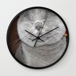 Cat Paparazzi Wall Clock
