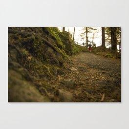 Caminos de Oregon Canvas Print