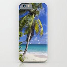 Caribbean Beach With Palm iPhone Case