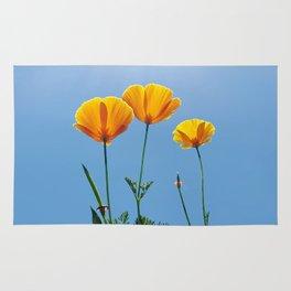 Poppy Daydream Rug