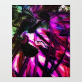 abstract photography 004 Canvas Print