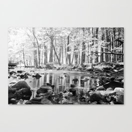 Creek. Canvas Print
