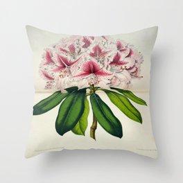Vintage Botanical Floral Flower Plant Scientific Illustration Duodenum Prince Camille Throw Pillow